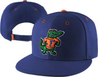 Florida Gators Hats